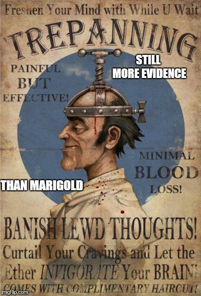 marigold2 meme